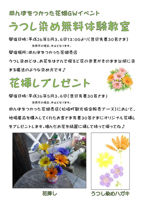 田んぼをつかった花畑~GWイベント~