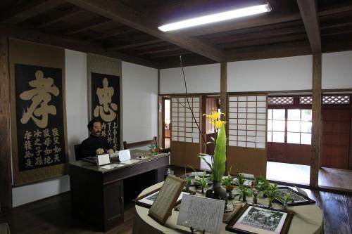 iwashina3