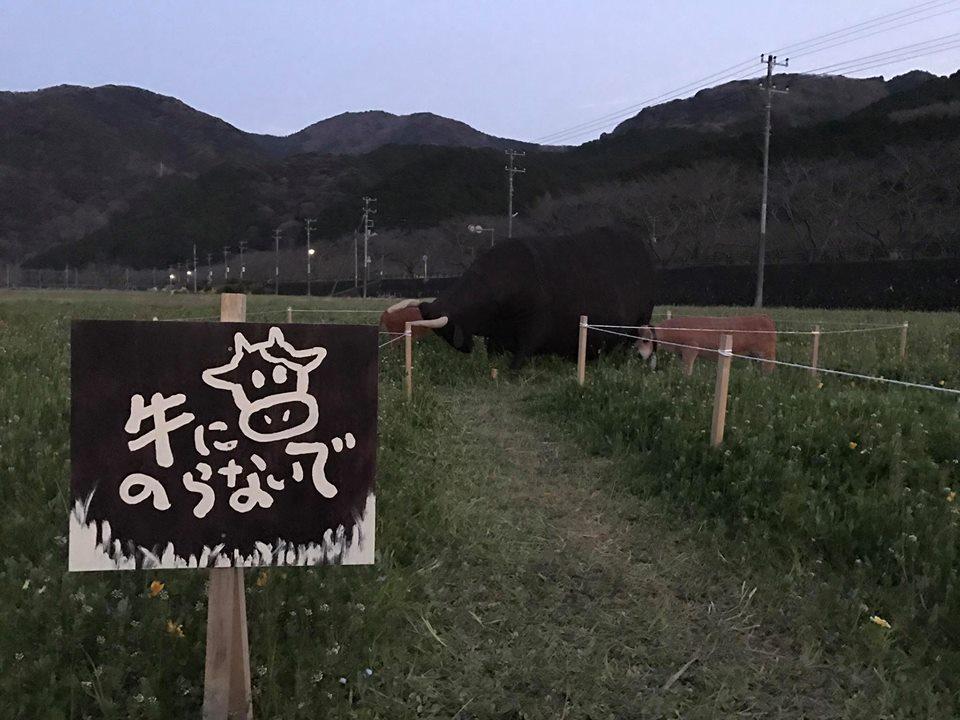 牛(案山子)にのらないでください。