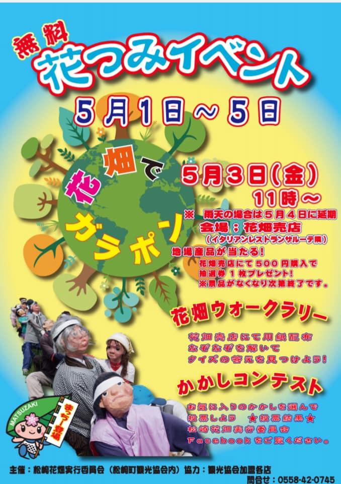 【GWイベント】田んぼをつかった花畑:花狩り無料開放