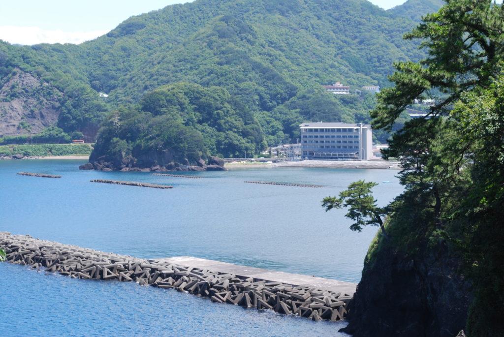 7月29日【月】遊泳状況!!