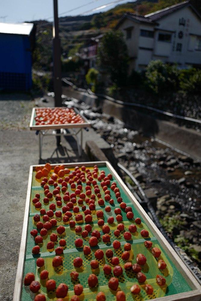 干し柿…和みます