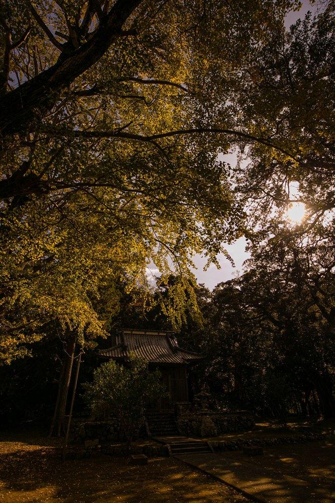 奥伊豆のパワースポット「山神社」