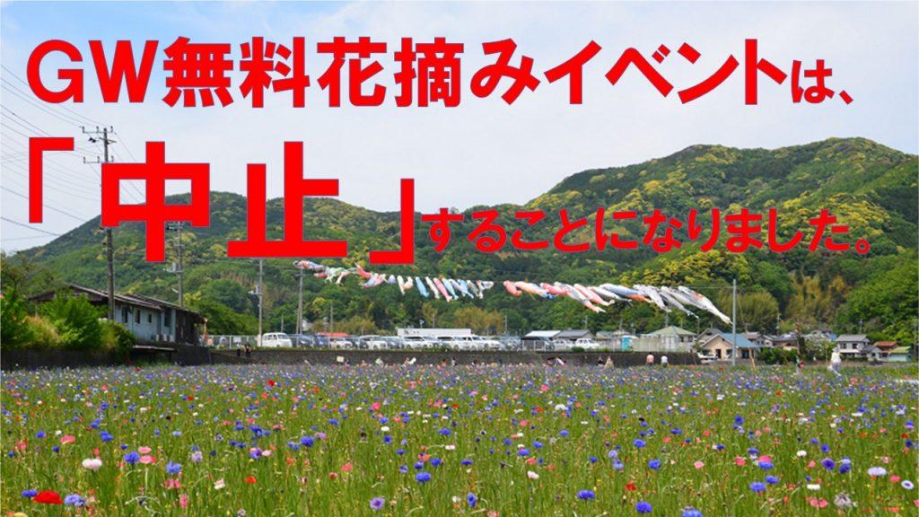 花畑「GW無料花摘みイベント」中止のお知らせ