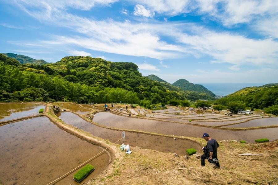 石部の棚田田植え祭が行われました。