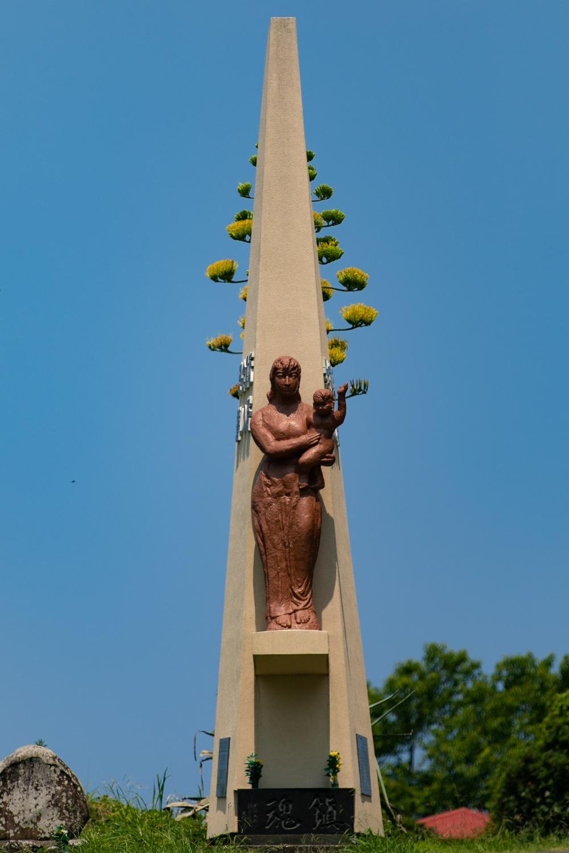 【貴重な彩り】リュウゼツランが咲いています